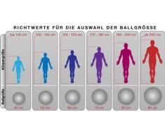 POWRX Gymnastikball | Sitzball | verschiedene Größenvarianten (45 cm)
