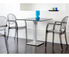 Wunschreich Kunststoffstuhl Igloo für Innen oder Außen, stapelbar und stabil (Stuhl, transparent-grau)