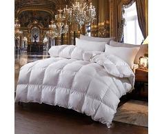 H&L Winter Daunendecke 220x240 cm 95% weiße Gänsedaunen Daunen Bettdecke Down Comforter, 220 240 Wärmeklasse 6 Warm Baumwolle,Weiß