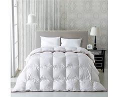 H&L Winter Daunendecke Weiße Gänsedaunen Daunen Bettdecke Down Comforter, Wärmeklasse 6 Warm 100% Baumwolle,Weiß,King