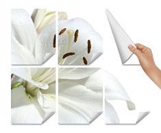 Graz Design 765226_15x15_60_V Fliesenaufkleber Fliesentattoos für Bad Küche Küchenfliesen Weiße Blüte und weißer Hintergrund Fliesengröße 15x15cm (Anzahl Fliesen = 4 breit und 4 hoch)