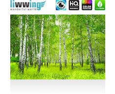 Vlies Fototapete PREMIUM PLUS 400x280cm SUNNY BIRCH FOREST by liwwing (R) | Vliestapete Tapete Wandbild Bild Birkenwald Bäume Wald Natur