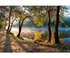 1art1 86723 Wälder - Bäume Am Fluss-Ufer Im Morgentau Selbstklebende Fototapete Poster-Tapete 180 x 120 cm