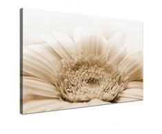 LANA KK - Leinwandbild Gerbera Natur mit Blumen auf Echtholz-Keilrahmen – Frühling und Natur Fotoleinwand-Kunstdruck in braun, einteilig & fertig gerahmt in 60x40cm