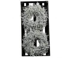 Wundervoller Asparagus Kranz Gewachst - Natur Türkranz Weihnachten - Deko Wandkranz/Weihnachtskranz/Gewachster Tischkranz - Weihnachten/Weihnachtsdeko (Weiß, Ø 25cm (2 Stück))