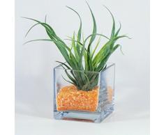 Sandra Rich 360016 Vase, Glas, transparent, 10 x 10 x 10 cm