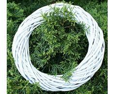 Kranz Weidenkranz Weidenring Korbkranz Korbring Dekokranz Türkranz Weiß Gemalt verschiedene Varianten (ORE325 - 25 cm)