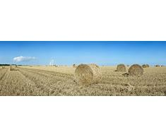 Panoramic Images - Hay bales in a field Veules-les-Roses Saint-Valery-en-Caux Blere Seine-Maritime Upper Normandy France Kunstdruck (15,24 x 45,72 cm)