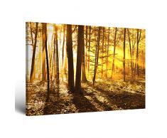 !!! SENSATIONSPREIS !!! ge-Bildet® Leinwandbild mit Neueröffnungsrabatt fast kostenlos Naturbilder Landschaftsbilder beautiful morning in the forest natur blumen wald gelb orange - 30x20 - direkt vom Hersteller aus Deutschland