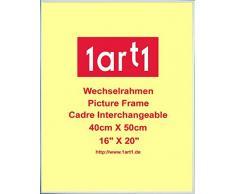 Amedeo Modigliani Poster Kunstdruck und Kunststoff-Rahmen - Liegender Akt, 1917 (50 x 40cm)