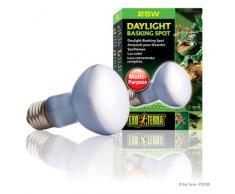 Exo Terra Daylight Basking Spot - Neodymium Tageslichtlampe, R20 / 75 W / 230 V