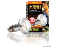 Exo Terra Intense Basking Spot - Tageslichtlampe, S20 / 75 W / 230 V