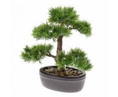 Emerald Kunstpflanze Bonsai Zeder Grün 32 cm 420001