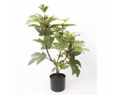 Emerald Kunstpflanze Feigenbaum Grün 75 cm 11.961C