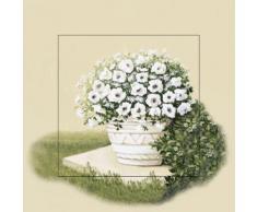 Artland Wandbild »Botanik Blumen Topfpflanze Malerei Creme«