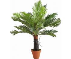 Home affaire Kunstpflanze »Baumfarn«
