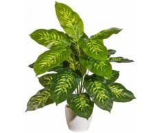 Kunstpflanze »Dieffenbachia«, im Keramiktopf mit Moos, Höhe 60 cm