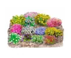Set: Beet & Balkonpflanze »Trockenmauer« (12 tlg.)