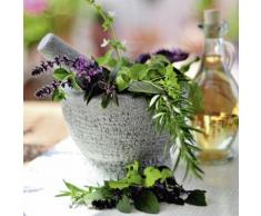 Artland Glasbild »Fotografie Pflanzen Kräuter Mörser«