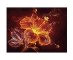 Premium collection by Home affaire Glasbild »Misha: Feuerblume«, 80/60 cm