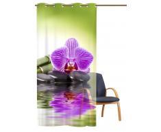 Transparenter Ösenschal Orchidee green - Metallösen