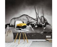 Wall-Art Vliestapete Das Duell schwarz Fototapeten Tapeten Bauen Renovieren