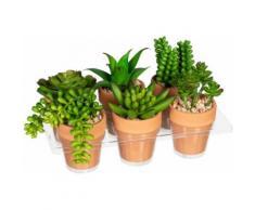 Creativ green Künstliche Zimmerpflanze Mini-Sukkulenten (6 Stück) grün Zimmerpflanzen Kunstpflanzen Wohnaccessoires