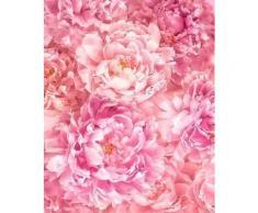 Komar Vlies Fototapete Soave, rosa, rosa