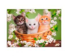 Artland Wandbild Katzen sitzen in einem Korb grün Bilder Bilderrahmen Wohnaccessoires