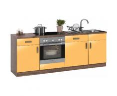 wiho Küchen Küchenzeile Tacoma, mit E-Geräten, Breite 220 cm EEK A orange Küchenzeilen Geräten -blöcke Küchenmöbel Arbeitsmöbel-Sets