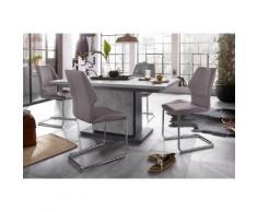 Homexperts Essgruppe Bärbel/Amelie Breite 140 cm mit Auszug und 4 Stühle, grau, Beton-Optik/grau
