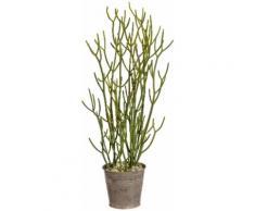 Gasper Kunstpflanze Euphorbia tirucalli, grün, grün