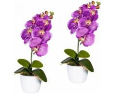 Gasper Kunstpflanze Orchidee Phalaenopsis (Set 2 Stück), lila, lila