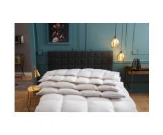 OBB Daunenbettdecke One&Only, warm, Füllung 100% Daunen, Bezug Baumwolle, (1 St.), Hohenstein Schlafkomfortnote 1,3 weiß Allergiker Bettdecke Bettdecken Bettdecken, Kopfkissen Unterbetten