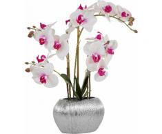 Home affaire Kunstpflanze Orchidee lila Künstliche Zimmerpflanzen Kunstpflanzen Wohnaccessoires