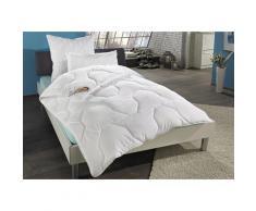 Beco Microfaserbettdecke Wellness XXL, polarwarm, (1 St.) weiß Allergiker Bettdecke Bettdecken Bettdecken, Kopfkissen Unterbetten