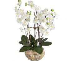 Schneider Kunstpflanze Orchidee weiß Künstliche Zimmerpflanzen Kunstpflanzen Wohnaccessoires