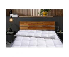 Otto Keller Daunenbettdecke Star, normal, Füllung 100% Daunen, Bezug Baumwolle, (1 St.) weiß Allergiker Bettdecke Bettdecken Bettdecken, Kopfkissen Unterbetten