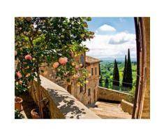 Home affaire Glasbild banepetkovic: Rosen in San Gimignano, mit Toskanalandschaft grün Glasbilder Bilder Bilderrahmen Wohnaccessoires