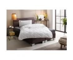 my home Kunstfaserbettdecke + Kopfkissen Tencelie, (Spar-Set), mit klimaregulierender TENCE™-Faserfüllung, ideal für den Schwitzer weiß Allergiker Bettdecke Bettdecken Bettdecken, Unterbetten