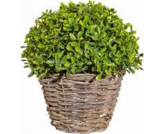 Deko Busch im Weidekorb ca 21 cm hoch, grün, grün
