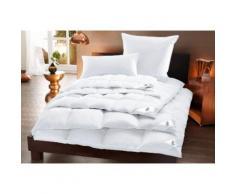 Otto Keller Daunenbettdecke Star, leicht, Füllung 100% Daunen, Bezug Baumwolle, (1 St.) weiß Allergiker Bettdecke Bettdecken Bettdecken, Kopfkissen Unterbetten