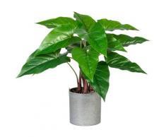 Creativ green Künstliche Zimmerpflanze Anthurium, im Melamintopf grün Zimmerpflanzen Kunstpflanzen Wohnaccessoires