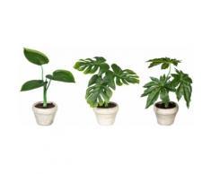 Creativ green Künstliche Zimmerpflanze Set aus Grünpflanzen (3 Stück) grün Zimmerpflanzen Kunstpflanzen Wohnaccessoires