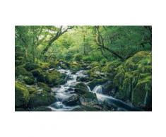 Komar Vlies Fototapete Green tales 400/250 cm, grün, grün