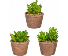 Kunstpflanze Sukkulenten (Set 3 Stück), grün, Neutral, grün