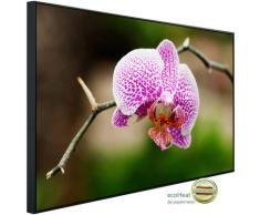 Papermoon Infrarotheizung Blume, sehr angenehme Strahlungswärme bunt Heizkörper Heizen Klima