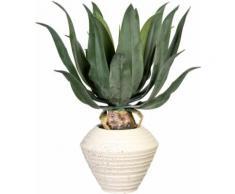 Creativ green Künstliche Zimmerpflanze Agave americana, in Keramikschale grün Zimmerpflanzen Kunstpflanzen Wohnaccessoires