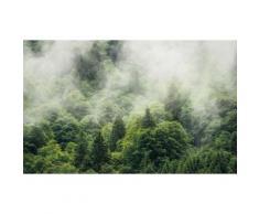Komar Vlies Fototapete Forest Land 400/250 cm, grün, grün