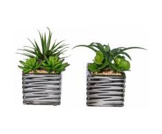 Creativ green Kunstpflanze Sukkulenten grün Künstliche Zimmerpflanzen Kunstpflanzen Wohnaccessoires